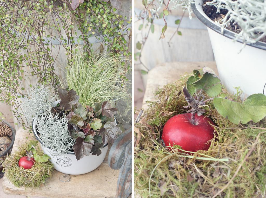 Herbstdekoration fuer Hof und Garten - 19