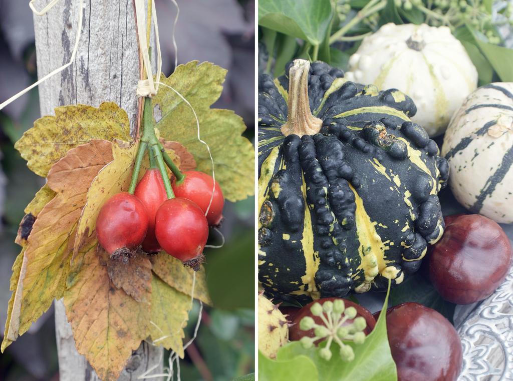 Herbstdekoration fuer Hof und Garten - 21