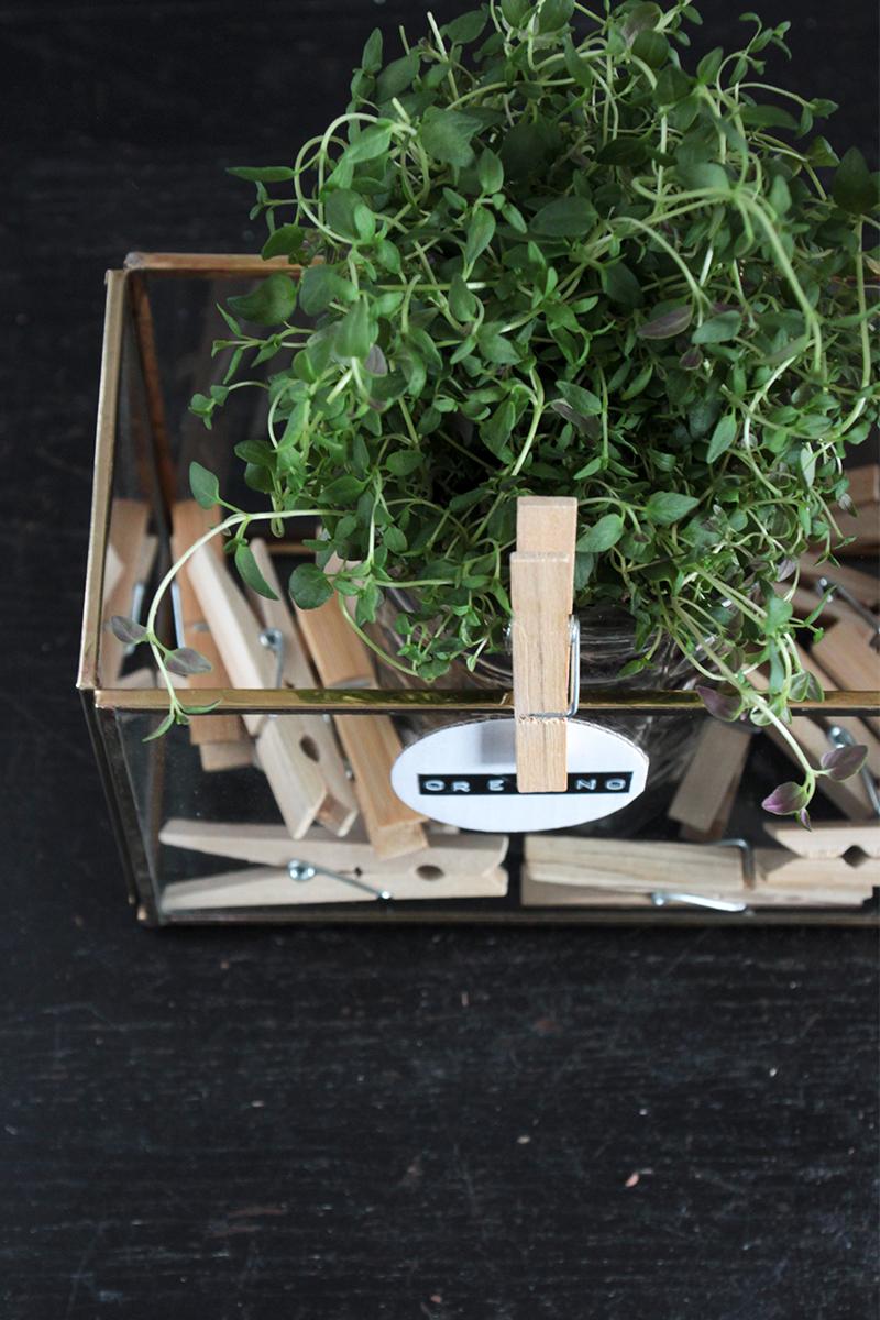 DIY-Kräuter-im-Kasten