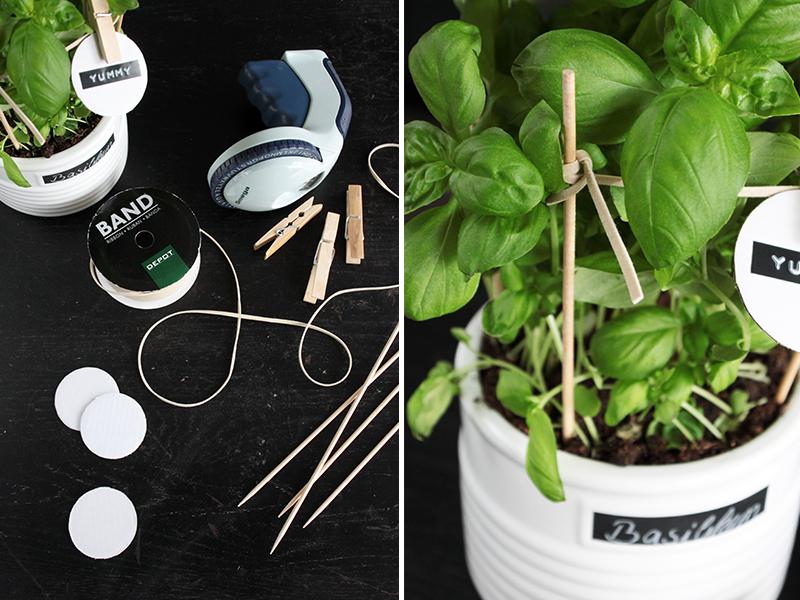 DIY Kräutergarten für Küche