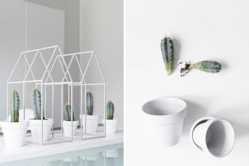 dekoidee_kaktus_1