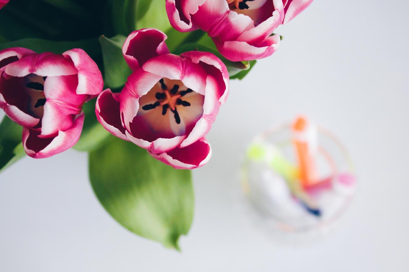 Blumen frischen das Büro auf