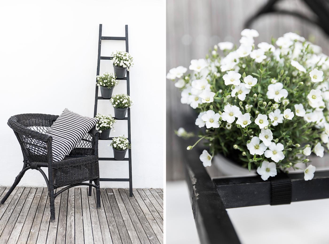 dekoleiter mit pflanzt pfen gestalten sch n bei dir by depot. Black Bedroom Furniture Sets. Home Design Ideas