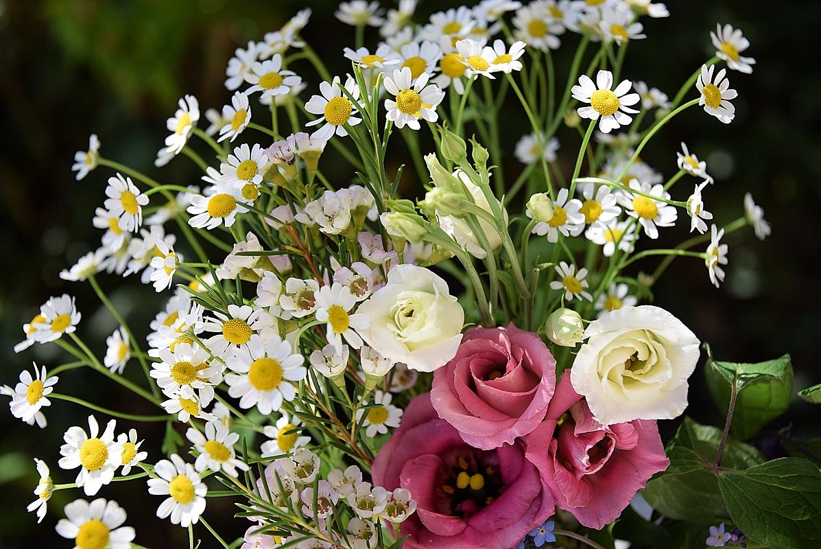 Edles-Porzellan-als-romantischer-Begleiter-für-Blumen 12k