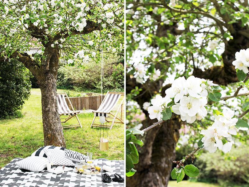 Kuschelzone-unterm-Apfelbaum
