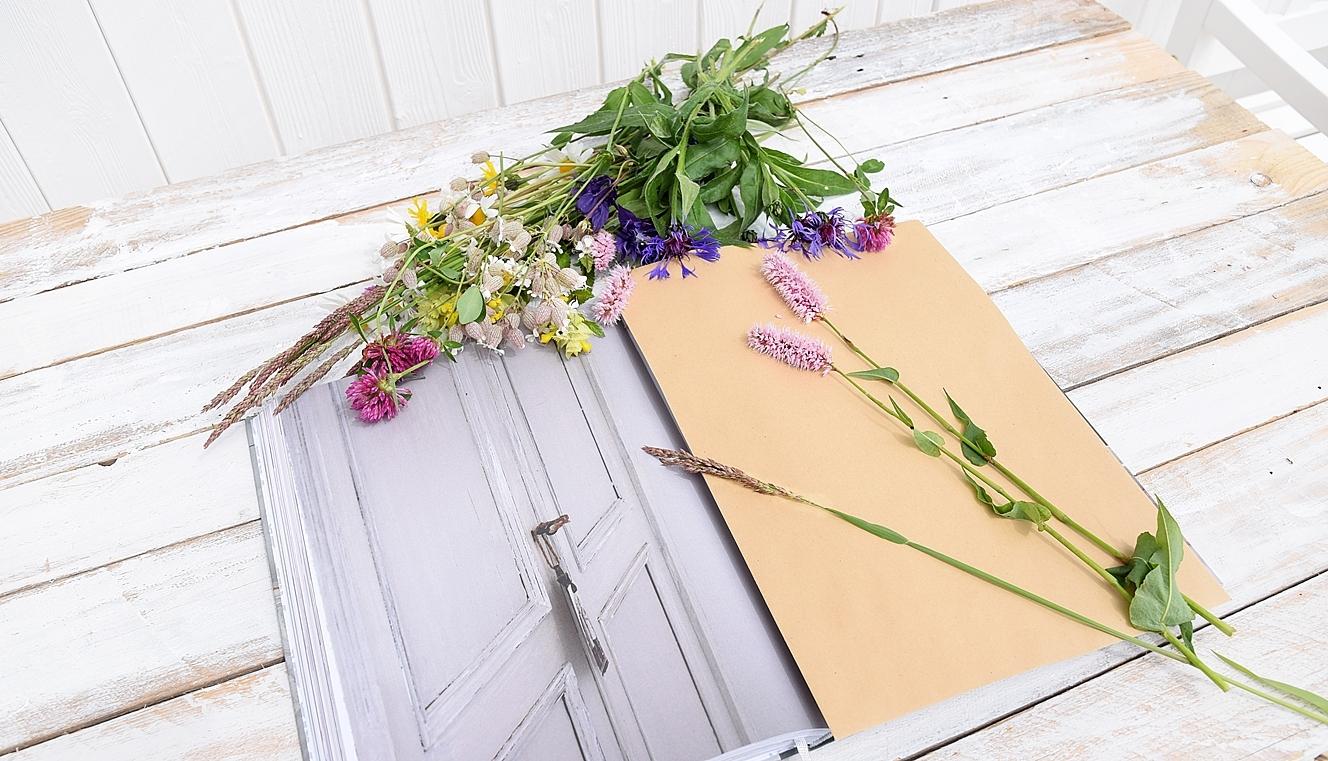DIY-Sommerdeko-mit-gepressten-Blumen 13k