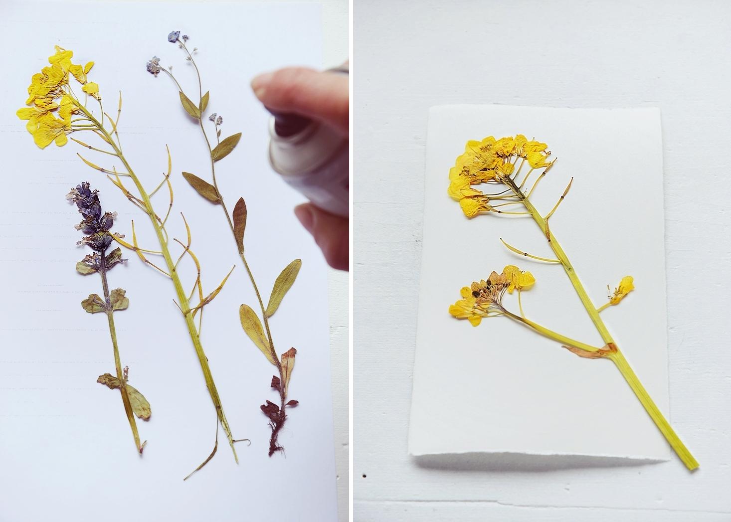 DIY-Sommerdeko-mit-gepressten-Blumen 14k (2)