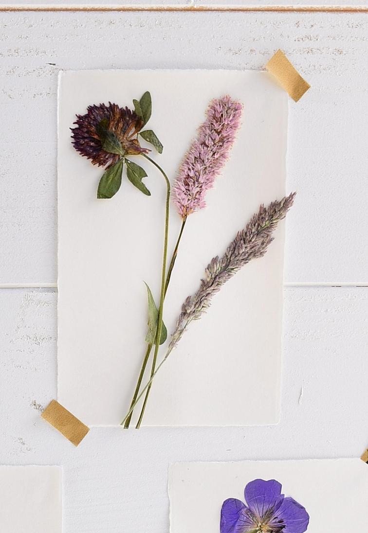 DIY-Sommerdeko-mit-gepressten-Blumen 3k