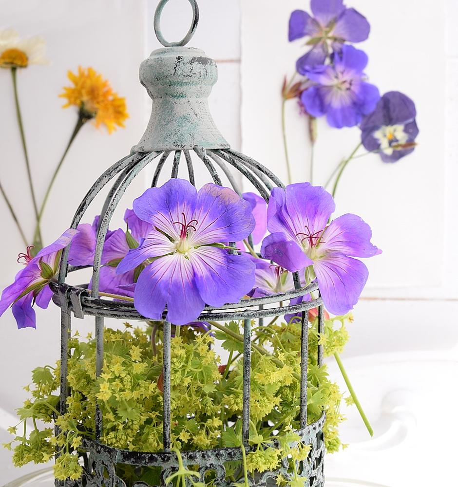 DIY-Sommerdeko-mit-gepressten-Blumen 6k