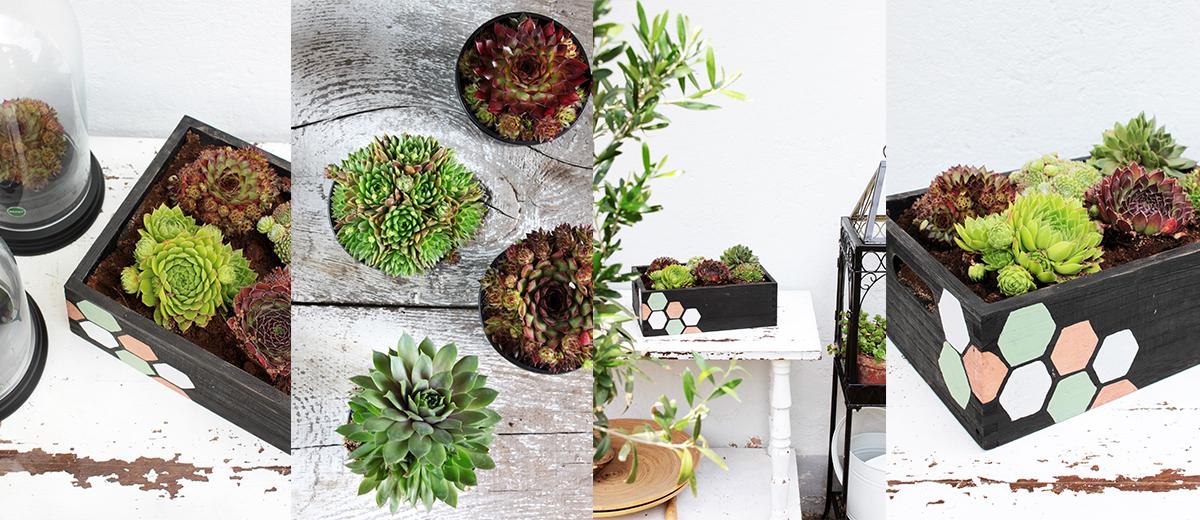 diy blumenkasten mit wabenprint sch n bei dir by depot. Black Bedroom Furniture Sets. Home Design Ideas