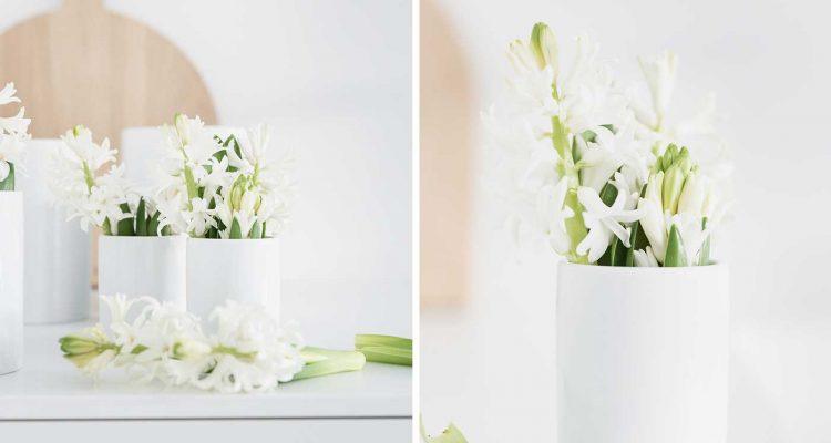 Tipps Welche Blumen Passen In Welche Vase Schon Bei Dir By Depot
