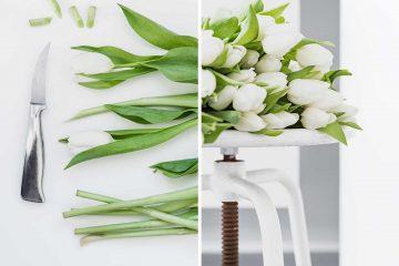 vasenpflebe-blumenpflege-tipps_5