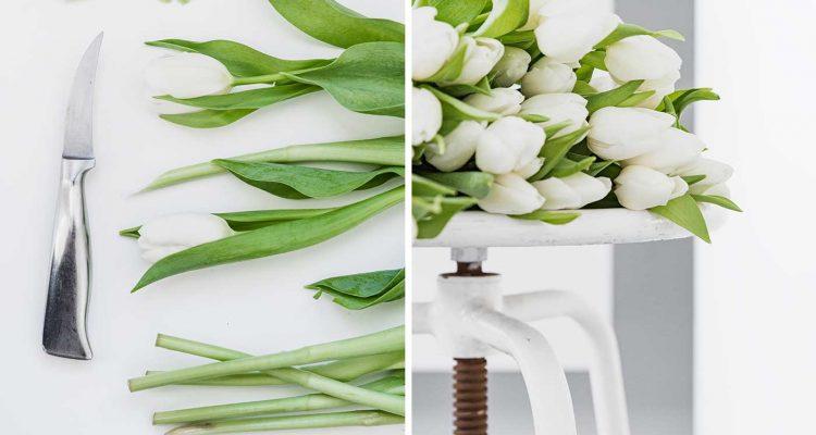 10 tipps schnittblumen frisch halten sch n bei dir by depot. Black Bedroom Furniture Sets. Home Design Ideas