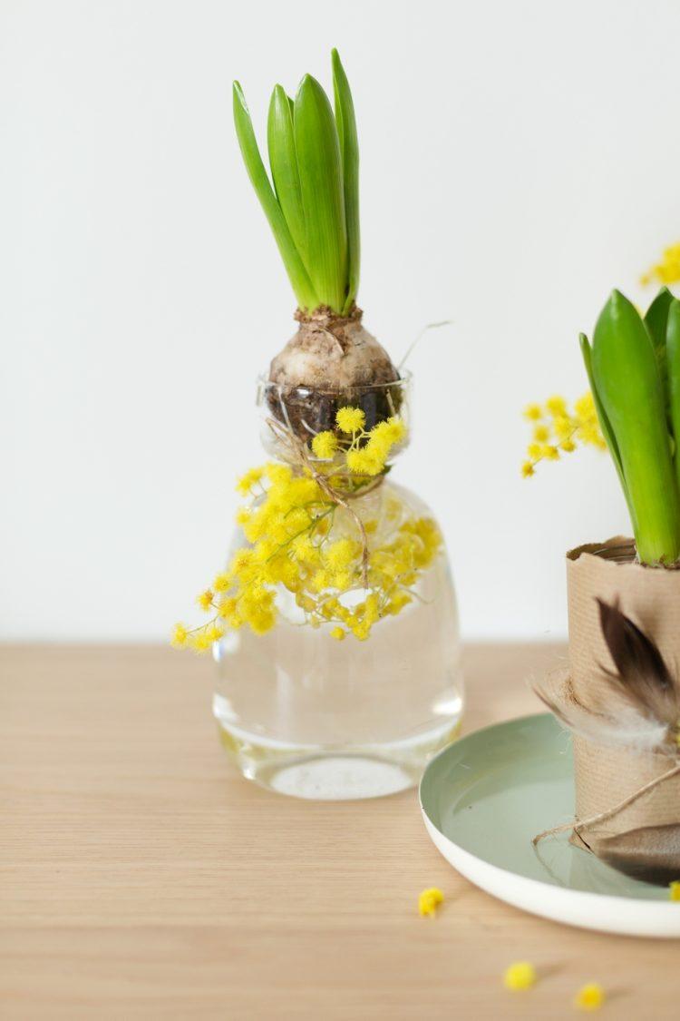 Dekoidee-mit-Blumenzwiebeln-schoen-bei-dir-wienerwohnsinn-_0006