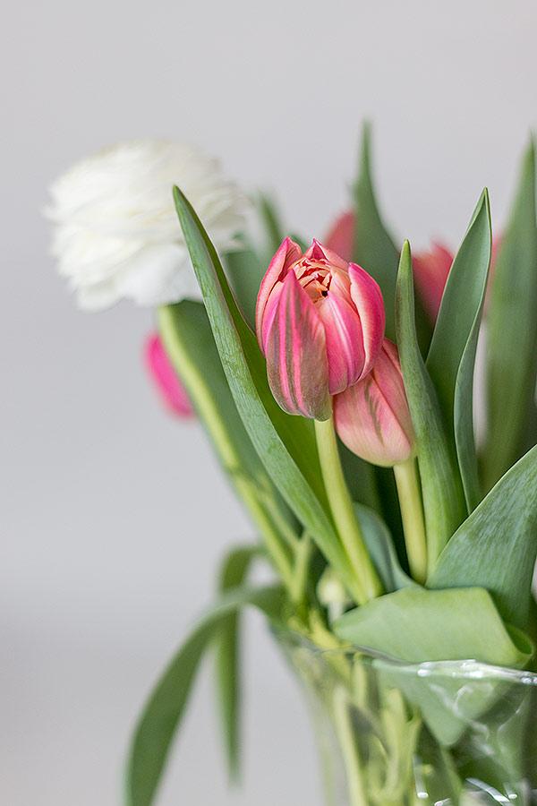 Tulpen als Osterdeko