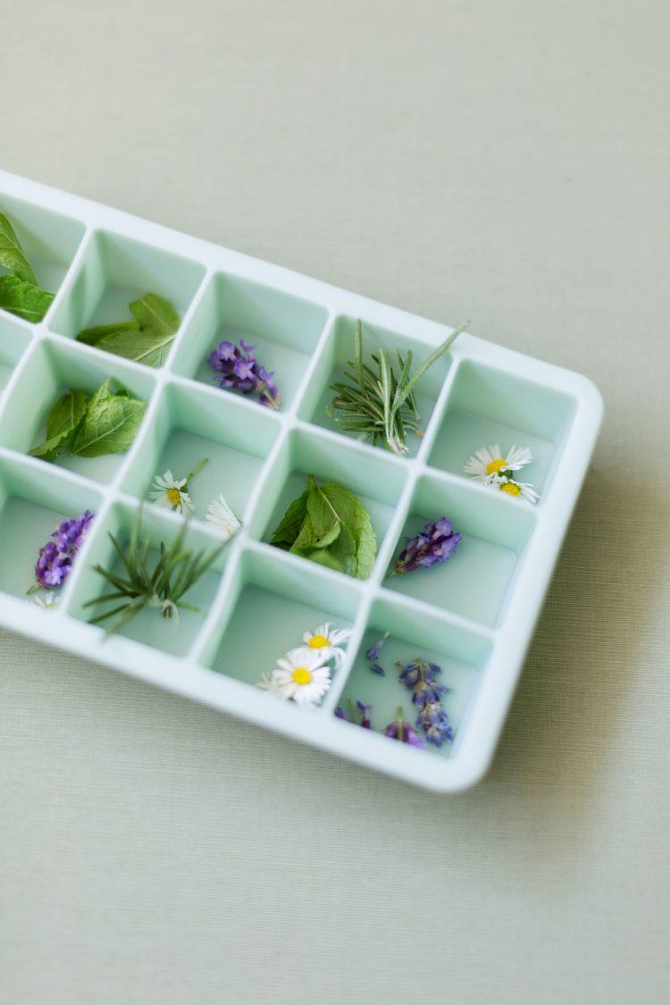 DIY Blüten-Eiswürfel & Rezepte für Sommercocktails