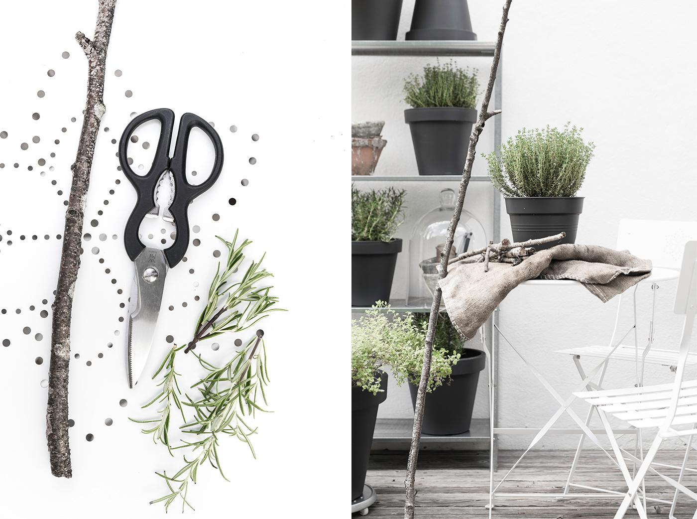 So könnt ihr eure Kübelpflanzen winterfest machen!