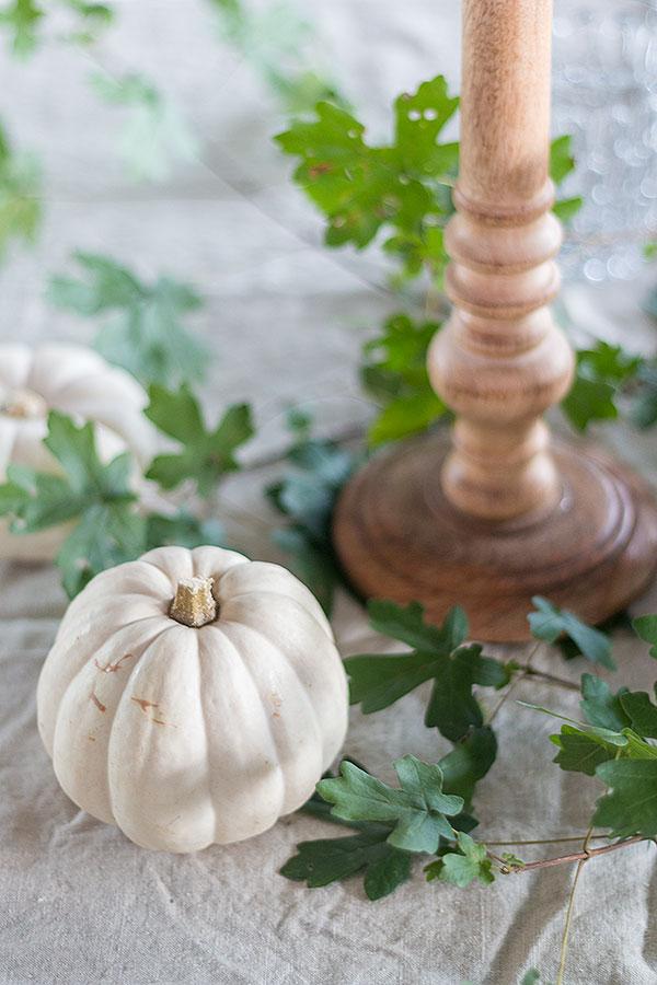 weiße Zierkürbisse und Blätter als Tischdeko