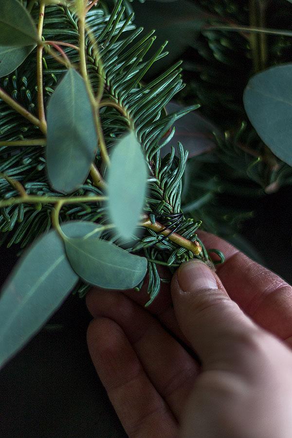 Nobilis und Eukalyptus Zweige miteinander verdrahten
