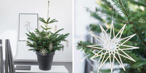 weihnachtsbaum_langom_200