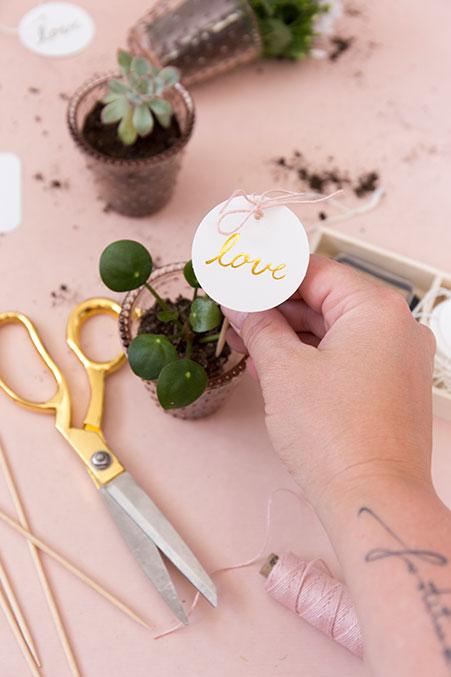 Diy Gastgeschenk Zu Hochzeit Minipflanzen Schon Bei Dir By Depot