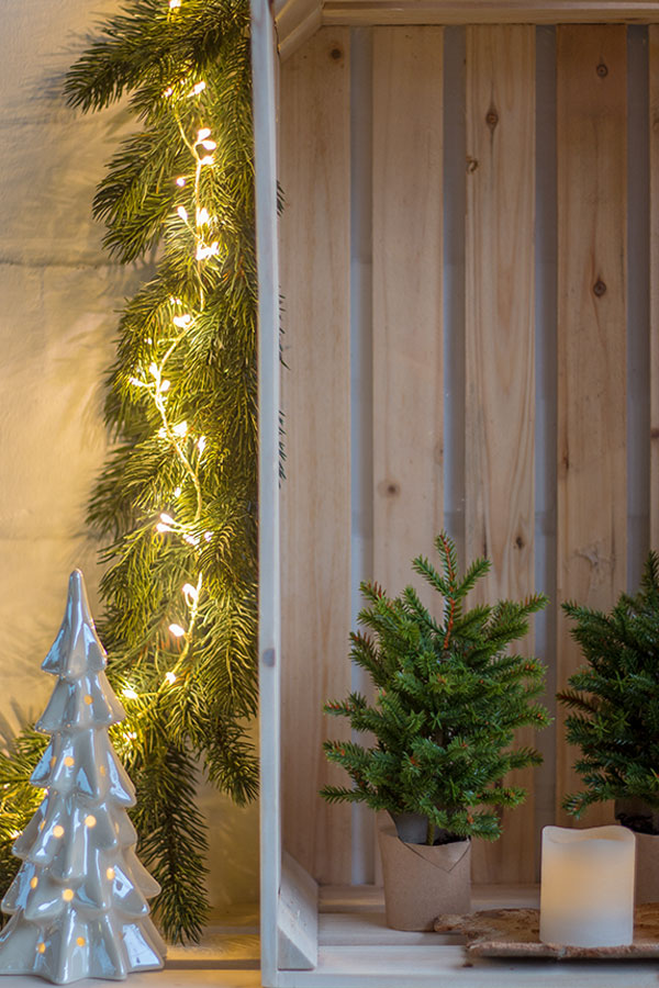 Weihnachten in der Weinkiste mit Tanne