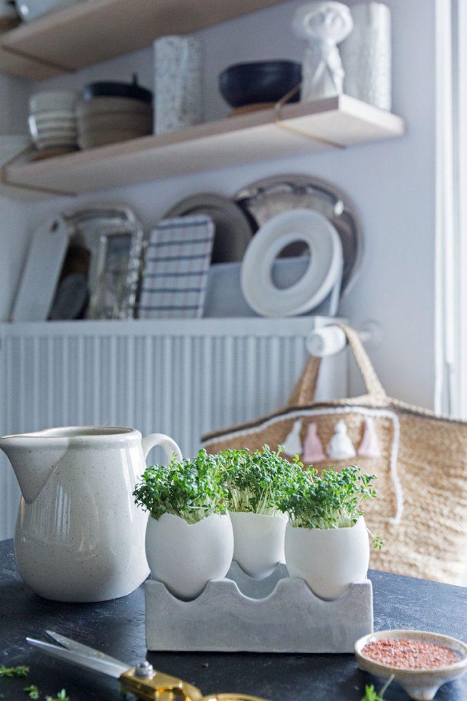 DIY Kressegarten in der Küche