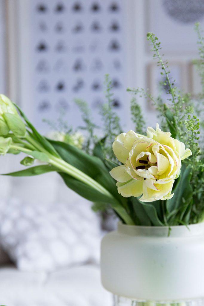 wilde-tulpen-als-fruehlingsdeko