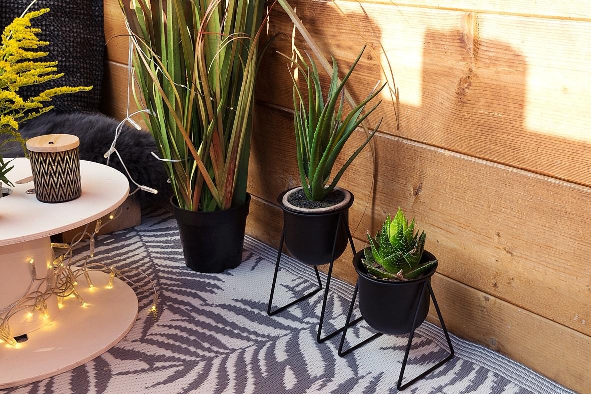 Pflanzendeko für den Balkon