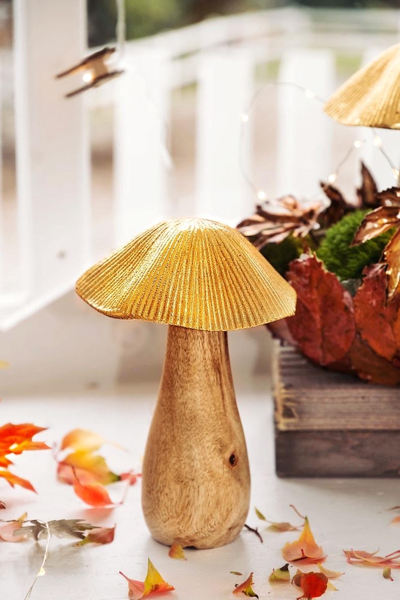 Herbstdeko - Pilz