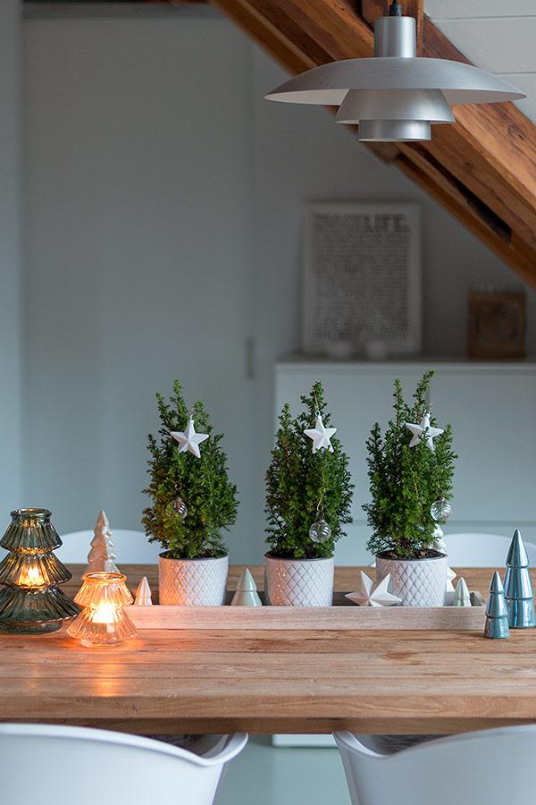 schlichtes weihnachtsliches Dekotablett mit echten kleinen Tannenbäumen