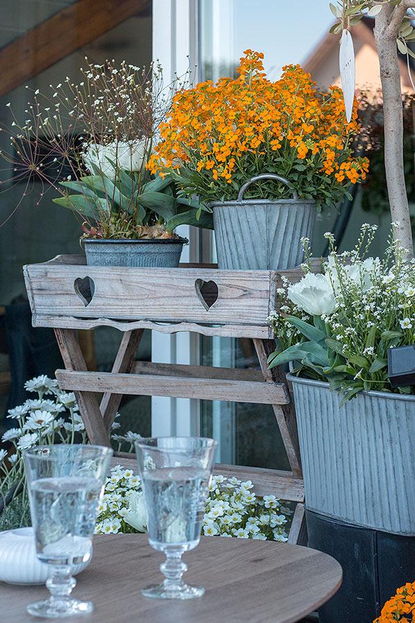 Balkon frühlingshaft bepflanzen mit Frühlingsblühern