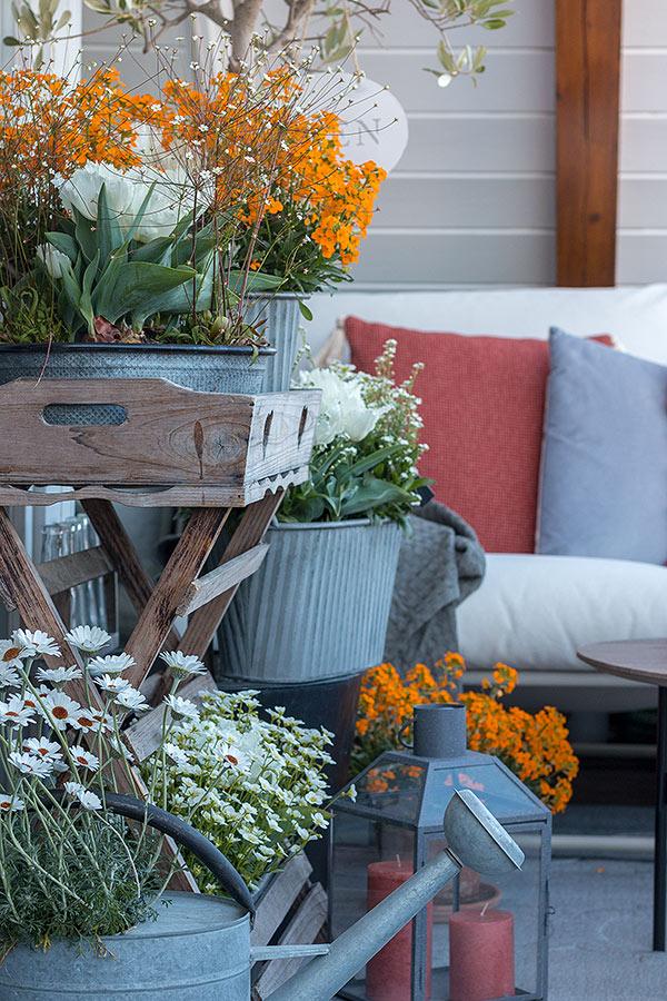 Balkon frühlingshaft bepflanzen