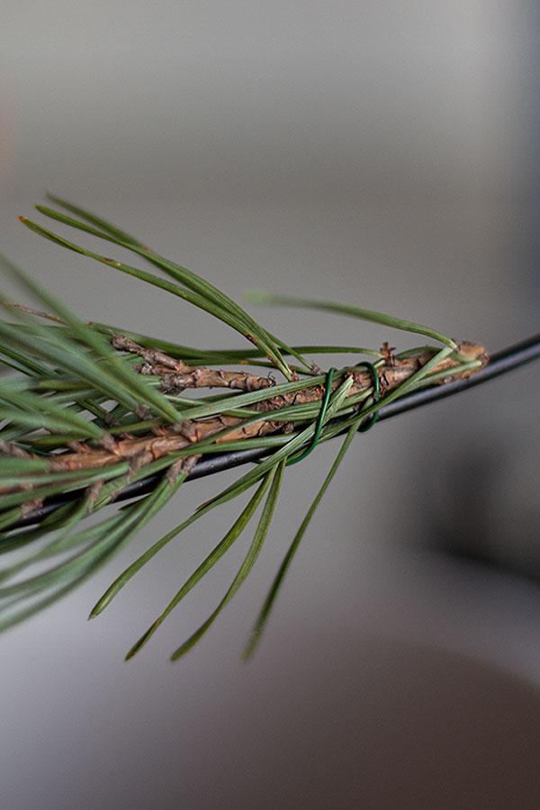 Zweige mit Draht am Metallgestell befestigen