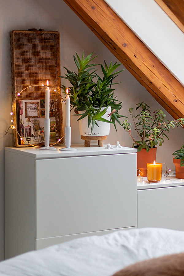 Pflanzen sorgen für ein gutes Raumklima im Schlafzimmer